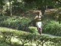 どこかの公園で色白女性が全裸ブーツでお散歩撮影!!★ライブチャット